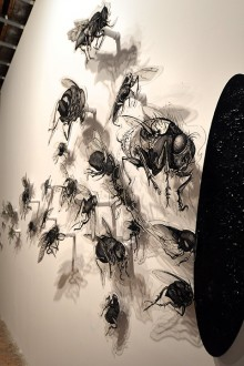 03.-Flies---ink-and-acrilic-on-plexiglass---variable-dimensions---2020.